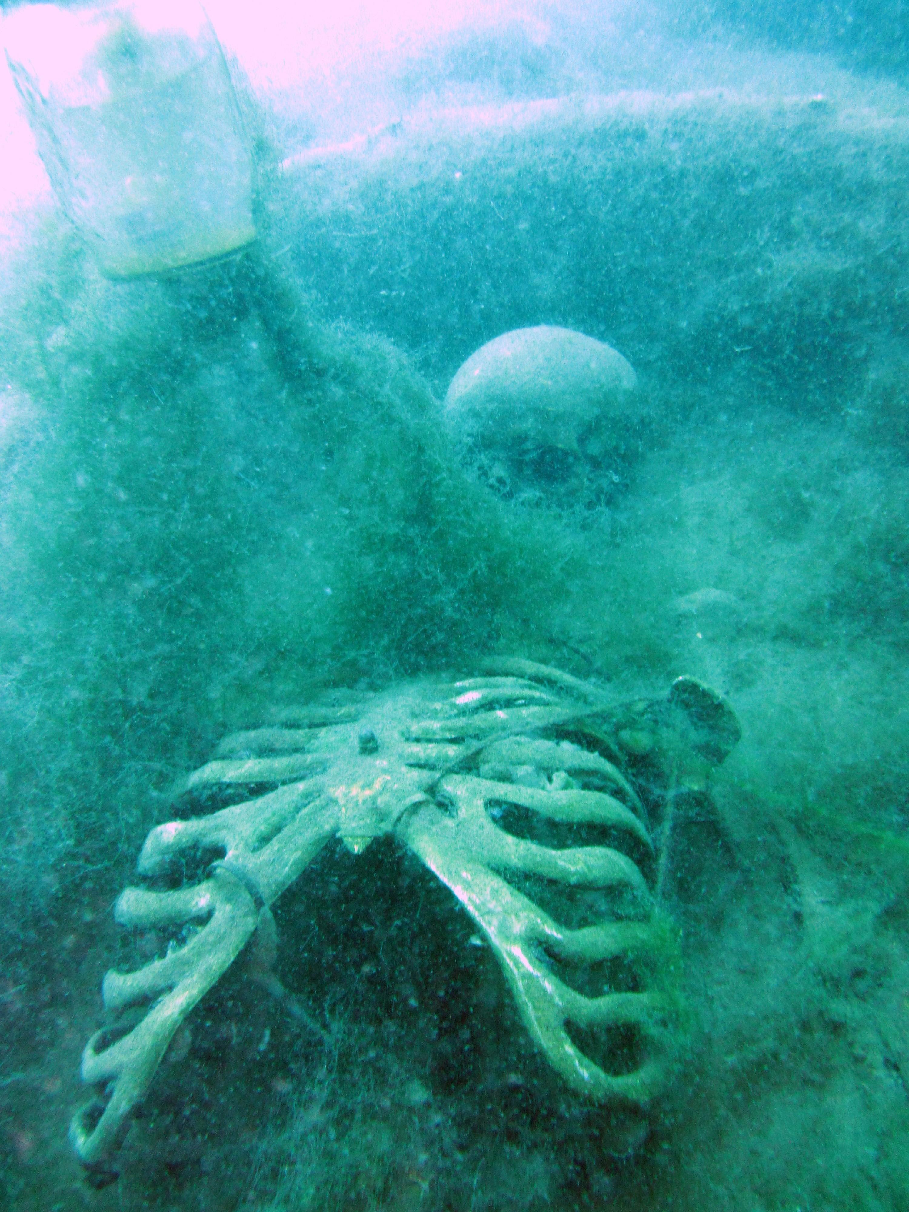 Skelett auf dem Nordhusia Friedhof